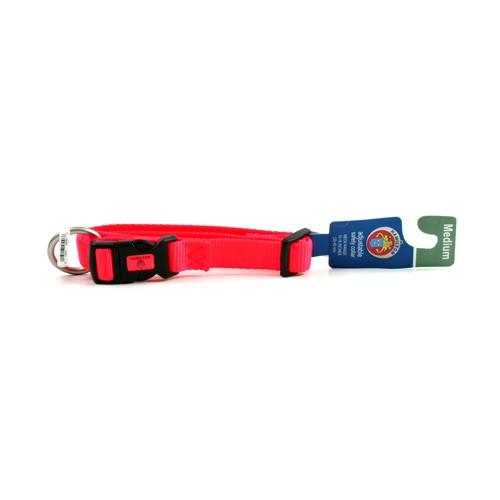 Pets - Hamilton Medium Pet Collar - Orange - Adjustable Neck Range Between 10 to 16 Inches - 12 For $12.00
