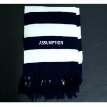 Overstock Blowout - Assumption Scarves - Blue/White Striped - 12 For $24.00
